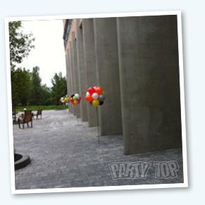 Ballon Deco Topairy